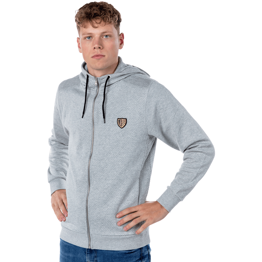 Feyenoord Hooded Sweater Full Zip F, grijs, Heren